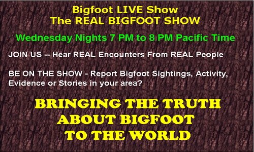 Bigfoot movies