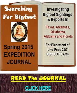 bigfoot encounters news